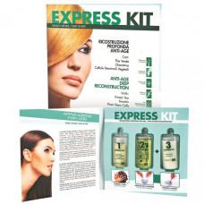 Набор для шокового восстановления EXPRESS KIT ING